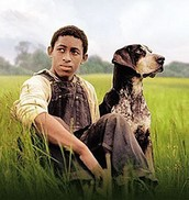 A Man That Is Squirrel Hunting With His Dog