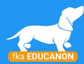 PlayPosit (FKA Educannon)