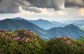 Appalachian Highlands         Rating:7