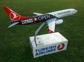Turkey Work Experience
