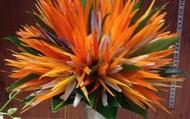 Bird's of Paradise Bouquet
