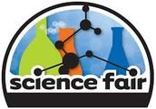 Science Fair 2014-15