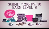 Level 3 - $1,200