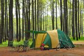 Lloyd Park Camping