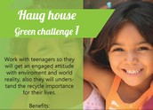 Haug house