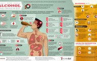 How the alcohol travels through the body.