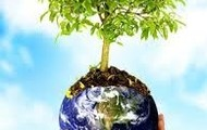 Plant more trees and plants.