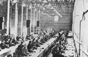 Prisoners in Auschwitz