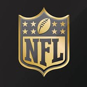 The Purpose Of The NFL