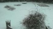 When it snowed in early 2014