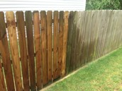 Fence and Deck!