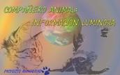 Compañero Animal: Información Luminosa
