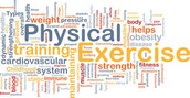 Physical Education Fitness Assessment