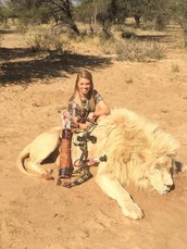 Un ejemplo de estos animales que se mató.