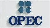 What is OPEC ?