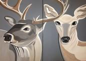 Deer Date Night!