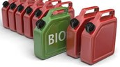 What Qualifies a Biofuel?