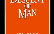 the Descent of Man