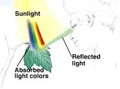 This is how Visible Light comes in contact