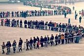 filas largas