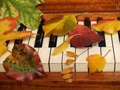 Music Faculty Recital