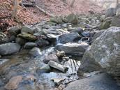 Stream or River