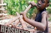 Big Chocolate Companies using chocolate from child labor farms