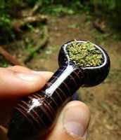 Marijuana in a bowl