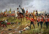 Napoleon in the battle of Waterloo