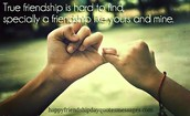 The love of Friendship