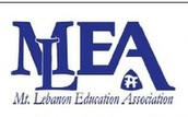 MLEA Summer Scholarships