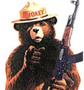 2nd amendment, 6th right-right to bear arms
