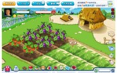 Farm games today