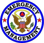 Emergency Management Director