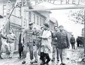 Auschwitz Liberation