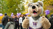 UW Bothell- Student Engagement & Activities