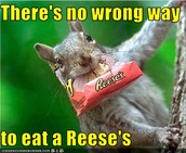 REESE'S BEST CHOCOLATE EVER!