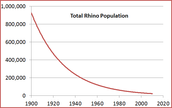 Total Rhino Population