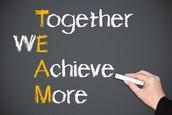 Motivation/Stress/Team Style Score