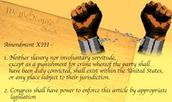 The 13th admedment-