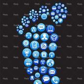 Digital Footprint & Reputation Facts