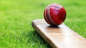 cricket betting tips free,