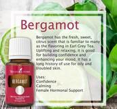 Hello Spring - Bergamot Essential Oil
