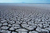 Drought affected land
