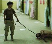 What happened at Abu Ghraib (Brief Description)
