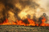 Main regions near North America affected by wildfires
