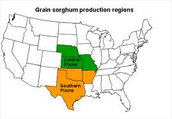 Regions of Texas in which they lived: