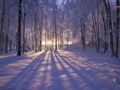 El invierno...