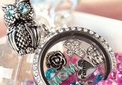 Origami Owl Opportunity!