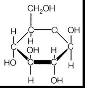 What Monomers are Carbohydrates Made of?